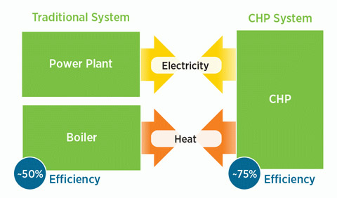 CHP Process Flow Diagram